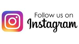 Follow Whirl-Y-Gig on Instagram